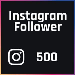 FollowerPilot 500 Instagram Follower kaufen
